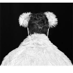 Kiss Gergely Máté: A jegesmedve