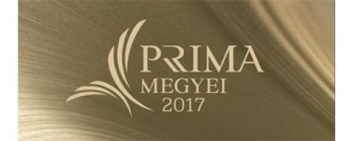 Megyei Príma díjat kapott Garay Nagy Tamás