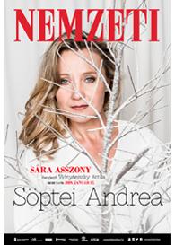 Döbrentei Sarolta: Sára asszony